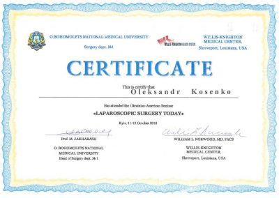 Сертификат Александра Косенко. Лапароскопические технологиии сегодня 2010 год