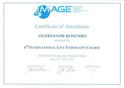 Сертификат Александра Косенко. 6-й международный курс эндоскопической хирургии 2015 год