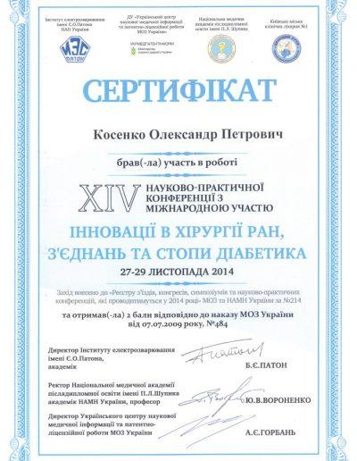 Сертификат Александра Косенко, Инновации в хирургии ран, связок и стоп диабетика 2014 год